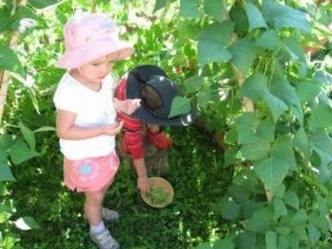 Gardening with Small Children: A World of Wonder and Rhythmic Impression