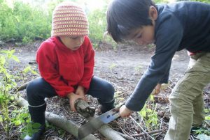 Living Arts Daily: Age-appropriate Chores for Kids
