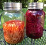 Living Arts Weekly: Natural Dyeing
