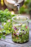 "Living Arts Wednesday: Planting a ""Tea"" Garden"